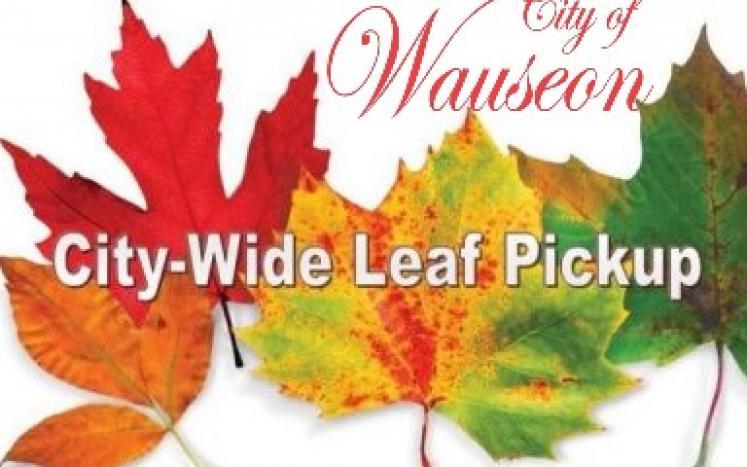 City-wide Leaf Pick up
